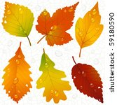 vector autumn leaves and... | Shutterstock .eps vector #59180590