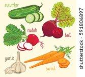 set of vegetables mix raster... | Shutterstock . vector #591806897