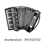 hand drawn vintage accordion ... | Shutterstock .eps vector #591915713