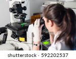 life science female researcher... | Shutterstock . vector #592202537