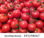tomatoes   Shutterstock . vector #592258067