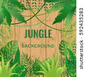 jungle background. jungle trees ... | Shutterstock .eps vector #592435283