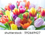 Mix Of Tulips Flowers Near The...