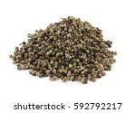 Small photo of Dry vitex fruits (Vitex agnus-castus L.). This drug (Agni casti fructus) is used to alleviate symptoms of various gynecological problems like management of premenstrual stress syndrome (PMS).