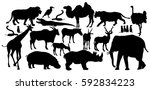 african animals big group... | Shutterstock .eps vector #592834223