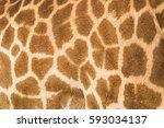 giraffe skin background | Shutterstock . vector #593034137