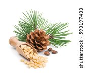 pine nuts with branches and... | Shutterstock . vector #593197433