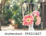 pink sunflowers for brighten up ... | Shutterstock . vector #593211827