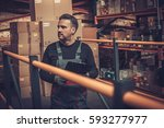 storekeeper with manual picking ... | Shutterstock . vector #593277977
