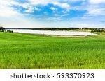 spring green field  landscape.... | Shutterstock . vector #593370923