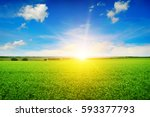 beautiful sunrise over field pea | Shutterstock . vector #593377793