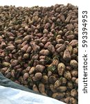 Small photo of Fodder beet