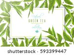 vector green tea horizontal... | Shutterstock .eps vector #593399447