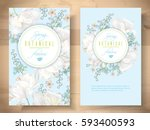Vector Spring Flower Banners...