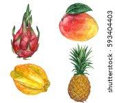 watercolor hand drawn set of...   Shutterstock . vector #593404403