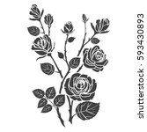 silhouette roses and leaves.... | Shutterstock .eps vector #593430893