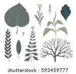 floral decorative elements.... | Shutterstock .eps vector #593459777