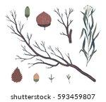 floral decorative elements.... | Shutterstock .eps vector #593459807