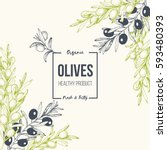 olives hand drawn vector... | Shutterstock .eps vector #593480393