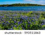 Beautiful Famous Texas...