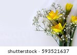 yellow daffodils on a white... | Shutterstock . vector #593521637