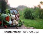 fresh vegetable harvest nature...   Shutterstock . vector #593726213