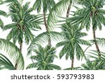 palm trees  tropical leaves ... | Shutterstock .eps vector #593793983