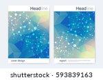 scientific brochure design... | Shutterstock .eps vector #593839163