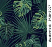 dark tropical background with...   Shutterstock .eps vector #593849027
