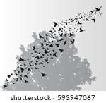 isolated  silhouette flying... | Shutterstock .eps vector #593947067