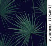 dark tropical background with... | Shutterstock .eps vector #594028457