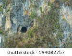 dry tropical forest | Shutterstock . vector #594082757