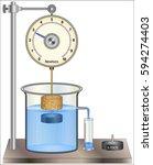 Archimedes' Principle   Buoyancy