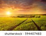 beuatiful sunset in fields of...   Shutterstock . vector #594407483