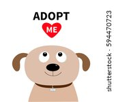 adopt me. dont buy. dog face.... | Shutterstock .eps vector #594470723
