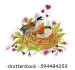 watercolor illustration birds... | Shutterstock . vector #594484253
