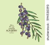 Background With Acai Berries....