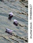 Paper Boat In Heavy Sea