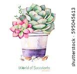 watercolor handpainted... | Shutterstock . vector #595045613