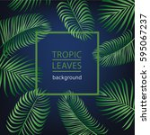 tropic leaves background with... | Shutterstock .eps vector #595067237
