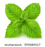 fresh raw mint leaves isolated | Shutterstock . vector #595089317