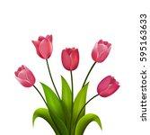 Tulip Bouquet. Vector...