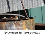 sparrow and scrap metal | Shutterstock . vector #595199633