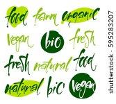 vector illustration  food...   Shutterstock .eps vector #595283207