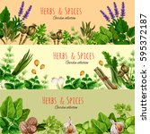 herbs  spices and condiments... | Shutterstock .eps vector #595372187