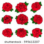 flowers roses  red buds and... | Shutterstock .eps vector #595613207