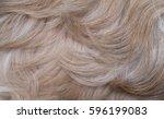 Shih Tzu Dog Hair Closeup View