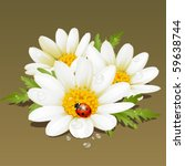 vector camomile | Shutterstock .eps vector #59638744