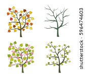 trees seasons vector set.... | Shutterstock .eps vector #596474603