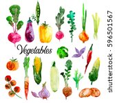 watercolor vegetables set.... | Shutterstock . vector #596501567